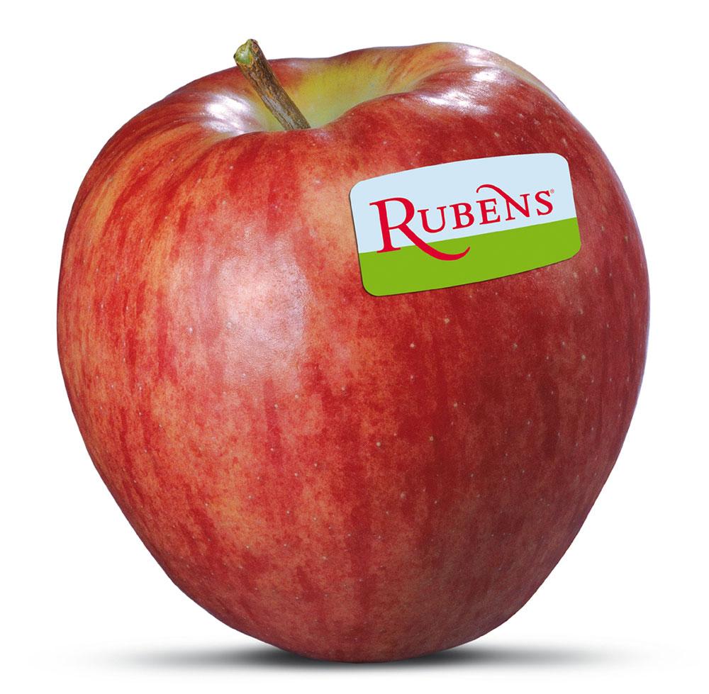 Rubens-mittel